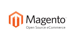 magento digital project manager